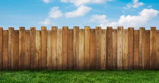Still on the Fence?